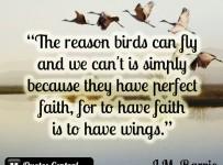 the-reason-birds-can-fly