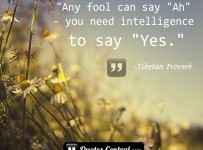any-fool-can-say-ah-you-need-inteligence-to-say-yes