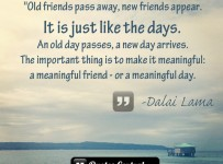 old-friends-pass-away-new-friends-appear-it-is-just-like