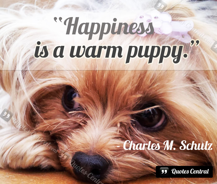 happines_is_a_warm_puppy