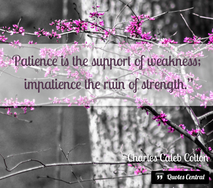patience_is_the_support_of