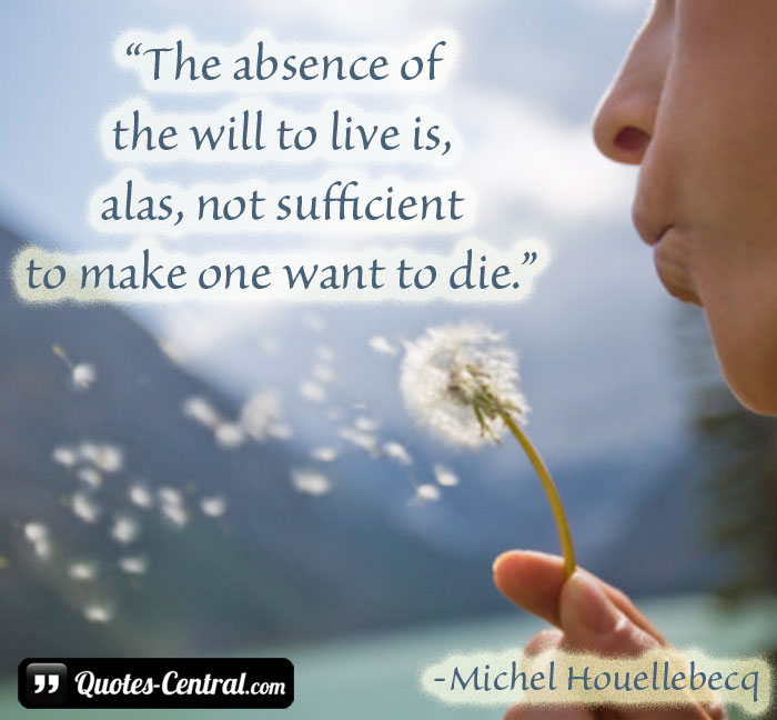 the-absence-of