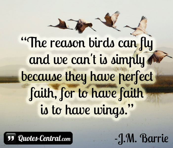 the-reason-birds-can-fly