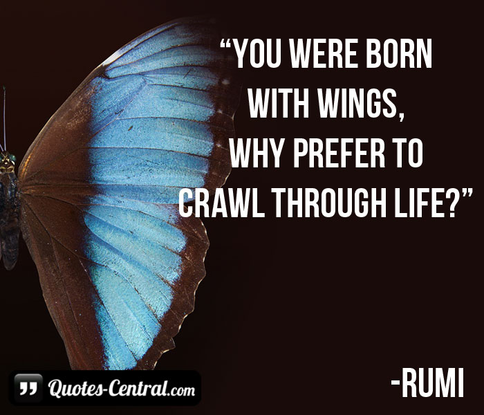 you-were-born-with-wings