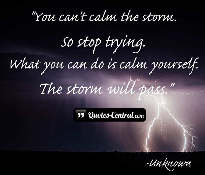 You can\'t calm the storm. - Quotes Central