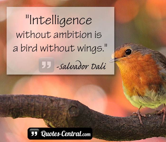 inteligence-without-ambition-is-a-bird