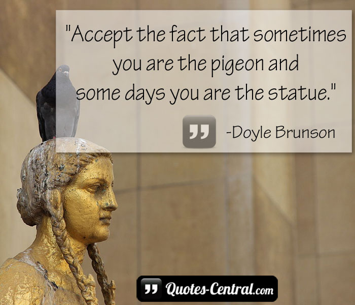 accept-the-fact-that-sometimes-you-are-the-pigeon