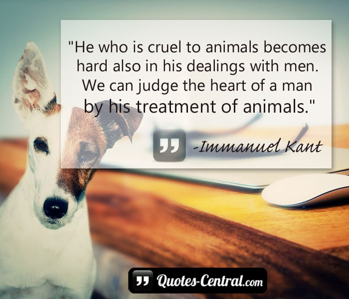 he-who-is-cruel-to-animals-becomes-hard-also-in
