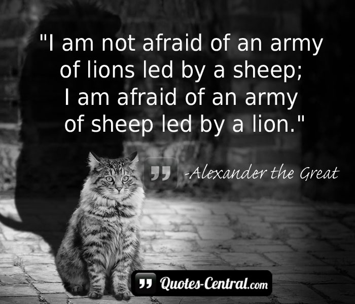 i-am-not-afraid-of-an-army-of-lions-led-by-a-sheep-i-am