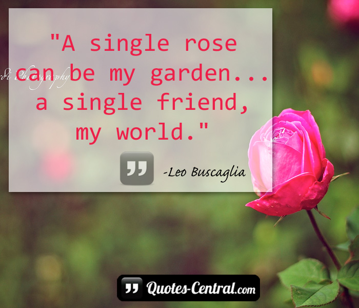 a-single-rose-can-be-my-garden-a-single-friend-my-world
